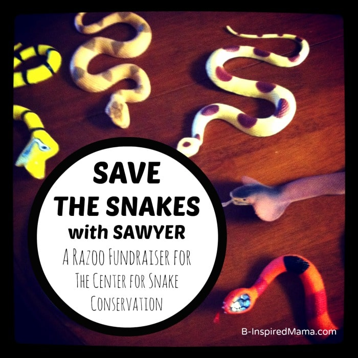 Save the Snakes with Sawyer Serving Learning Project at B-InspiredMama.com