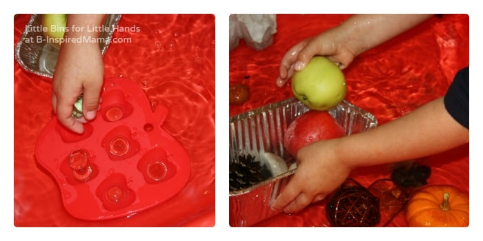 Experimenting with Sink or Float in a Preschool Science Activity at B-Inspired Mama