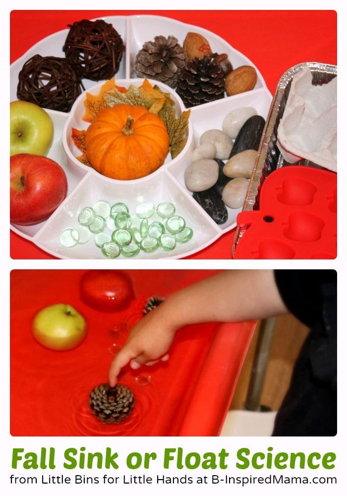 Super Easy Fall Sink or Float Preschool Science Activity