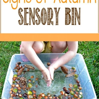 A Nature Walk and Autumn Sensory Bin [Contributed by Play Learn Love]