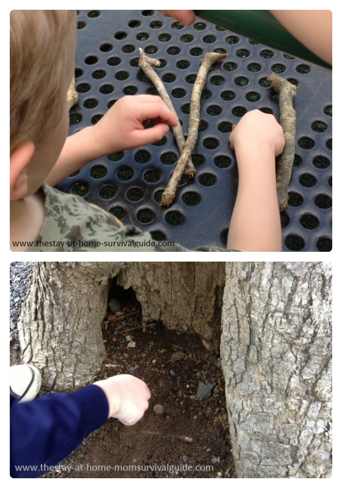 Exploring Trees with Nature Activities for Kids at B-Inspired Mama