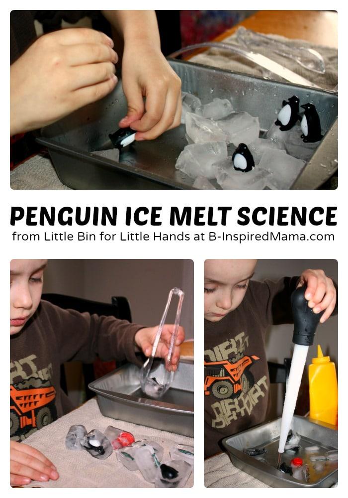 Penguin Ice Melt Science for Kids
