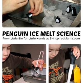Penguin Ice Melt Science for Kids