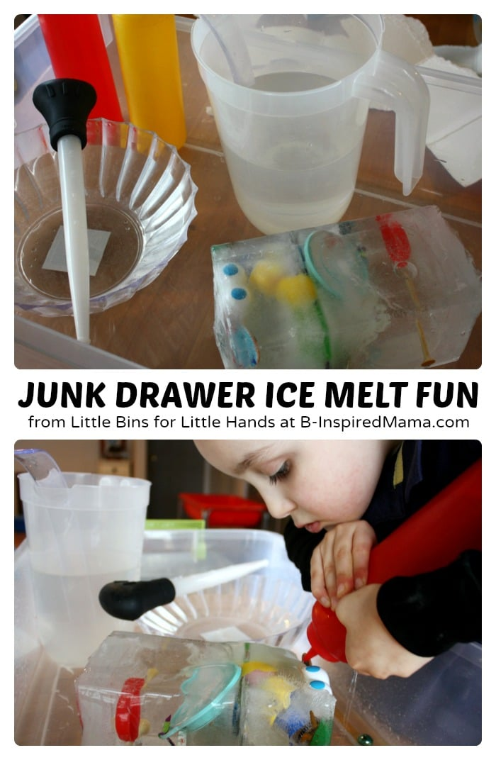 Junk Drawer Ice Melt Science for Kids