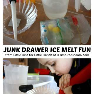 Junk Drawer Ice Melt Science for Kids