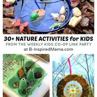 Spring Nature Crafts and Activities for Kids