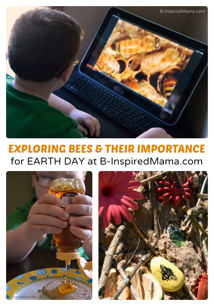 Earth Day Learning for Kids: Why Are Bees Important?