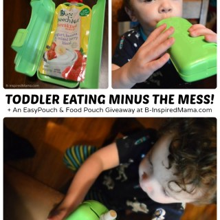 Toddler Feeding Without the Mess!