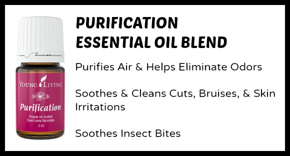 Purification Essential Oil Uses for Moms and Kids at B-Inspired Mama