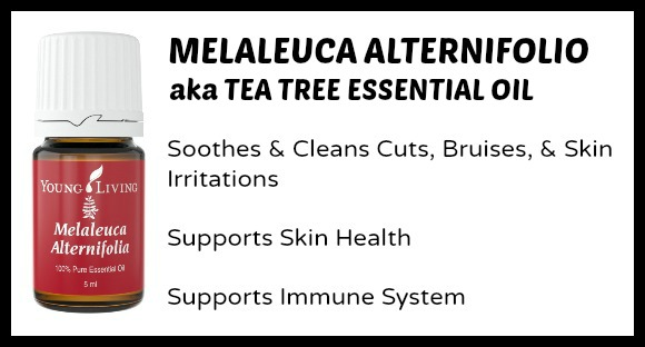 Tea Tree Essential Oil Uses for Moms & Kids at B-Inspired Mama