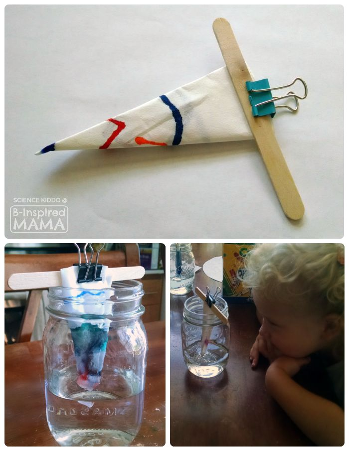 Marker Chromatography Science Experiment for Kids - at B-Inspired Mama