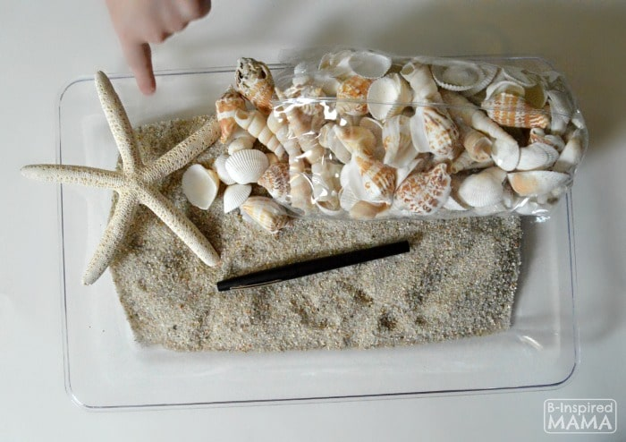 Learning the Alphabet with Seashells and Sand Sensory Writing - Materials - at B-Inspired Mama