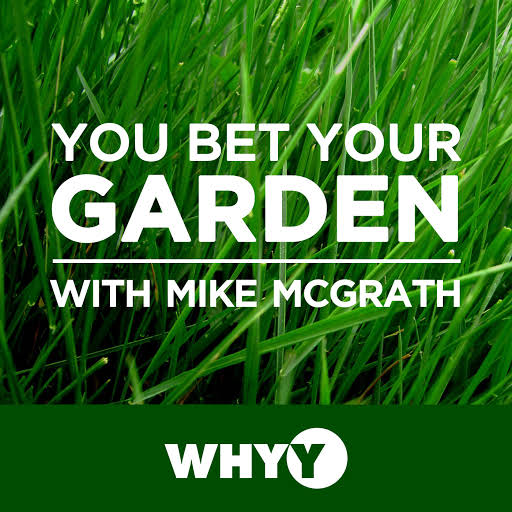"An hour of ""chemical-free horticultural hijinks,"" You Bet Your Garden, hosted by Mike McGrath, is a weekly, nationally syndicated Public Radio show airing out of WHYY-FM in Philadelphia that offers fiercely organic advice to gardeners far and wide."