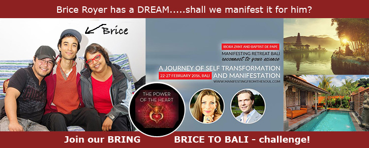Bring-Brice-to-Bali-Banner3