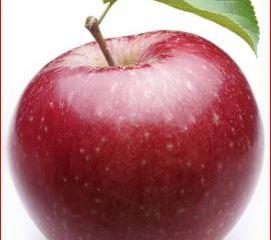 jenis dan manfaat buah apel