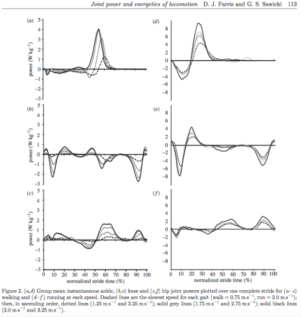 contribution-of-knee-ankle-hip-joints-running-walking-graph