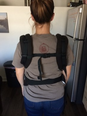 ergo baby carrying back view