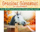 Gracious Giveaways. Win a prize package from the Cheshire Horse. Arv $150 {??} 11/14/19