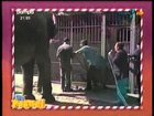 Old brazilian tv prank consist on you winning an elephant