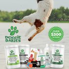 Win a $100 Amazon Gift Card & A Doggie Dalies Prize Pack, 3 winners!! (2/29/2020) {US}
