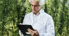 Don't Fall Over, but the DEA Just Changed Its Tune on Marijuana