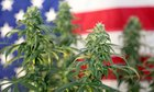 The '420 Bill' to Federally Legalize Marijuana Has Officially Been Introduced
