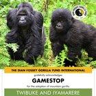 Adopted Gorillas