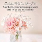 Our Lord, pour upon us patience and let us die as Muslims.