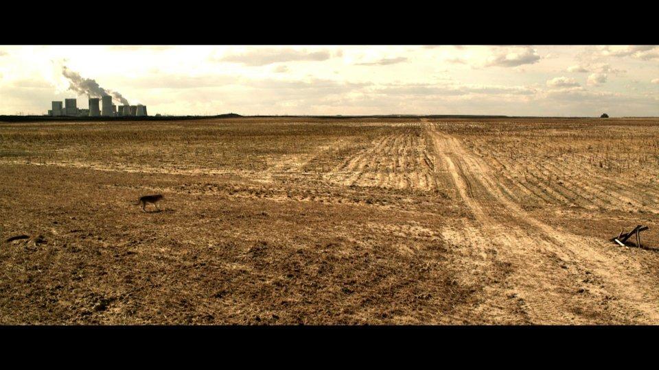 Bild zum Film: Feld mit Kohlekraftwerk und Wolf