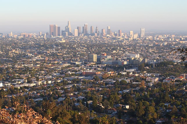 View from Griffith Park in Los Angeles