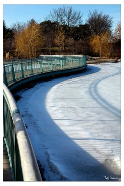 Curves of Ice