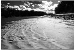 Banks of the Sabine River