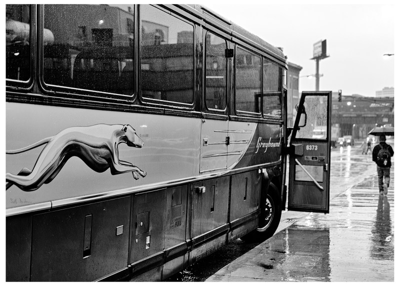 Greyhound 6373 - bw