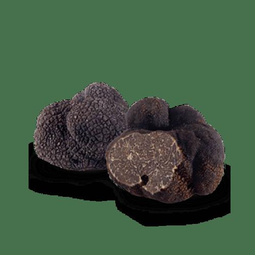 Fresh Truffles Line
