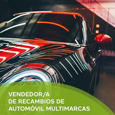 Vendedor/a de Recambios de Automóvil Multimarca