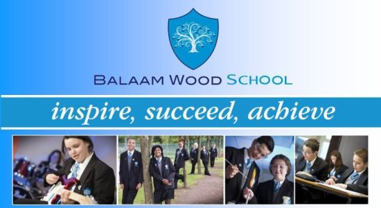 balaamwoodschool