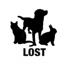 lostpet