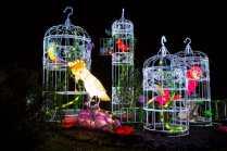 magicallanternfestivalbirmingham03