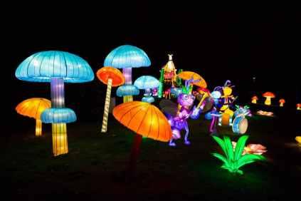 magicallanternfestivalbirmingham06