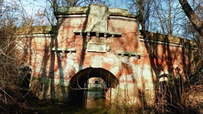 arhiva forturilor pentru opțiuni
