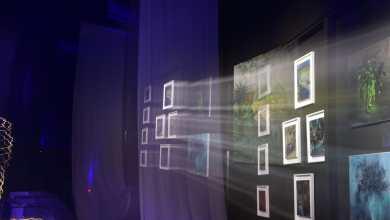 Photo of Se lansează MECENA.ART – Not your usual gallery – un proiect cultural inovativ și unic în România