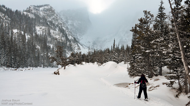 Winter Hiking For Kids Creating Memories In The Snow