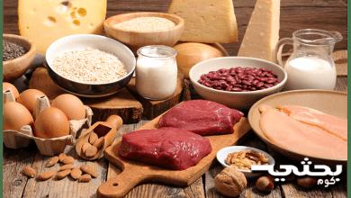 البروتين والاطعمة الغنية به