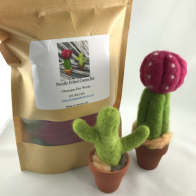 Okanagan Dye Works Needle Felted Succulents Kit