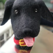 Felted dog puppet. Photo courtesy of Mel Broome.