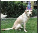 Happy 2nd Birthday Kelton