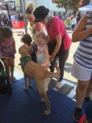 National Night Out at Target 8-2-16 (67)