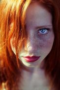 Hot Ginger 16