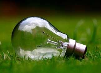 villanykörte hever a zöld fűben
