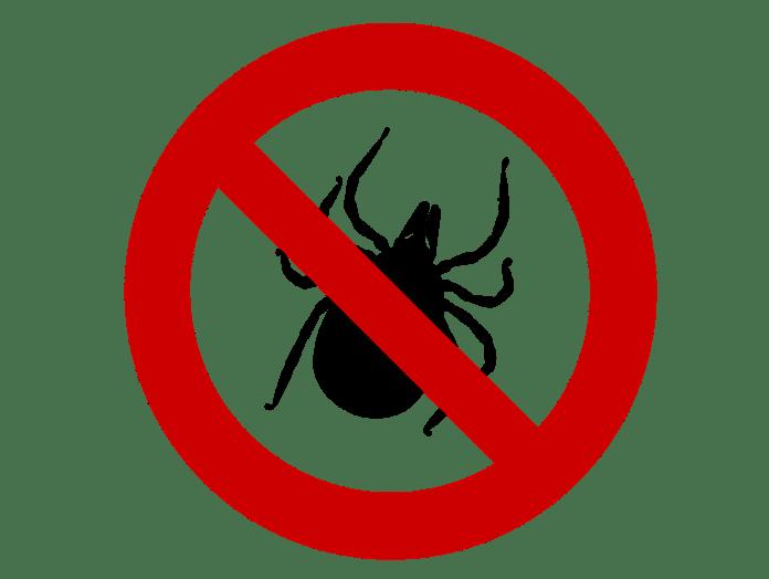 kullancs elleni védőoltásról